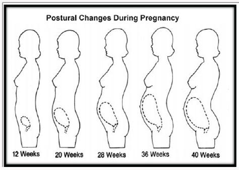 Zmiany fizjologiczne w ciąży